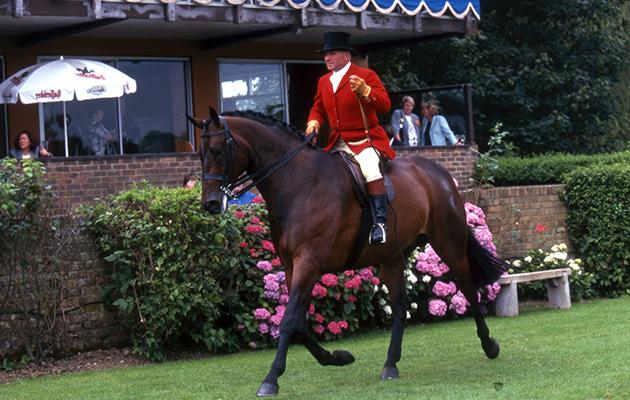 David Tatlow riding at RIHS