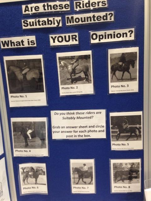 suitable pony rider