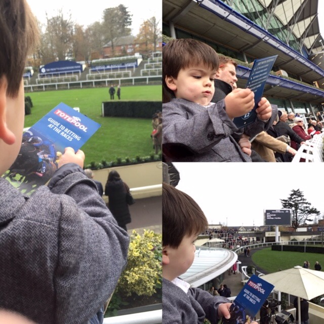 Joey, toddler, at Ascot racecourse