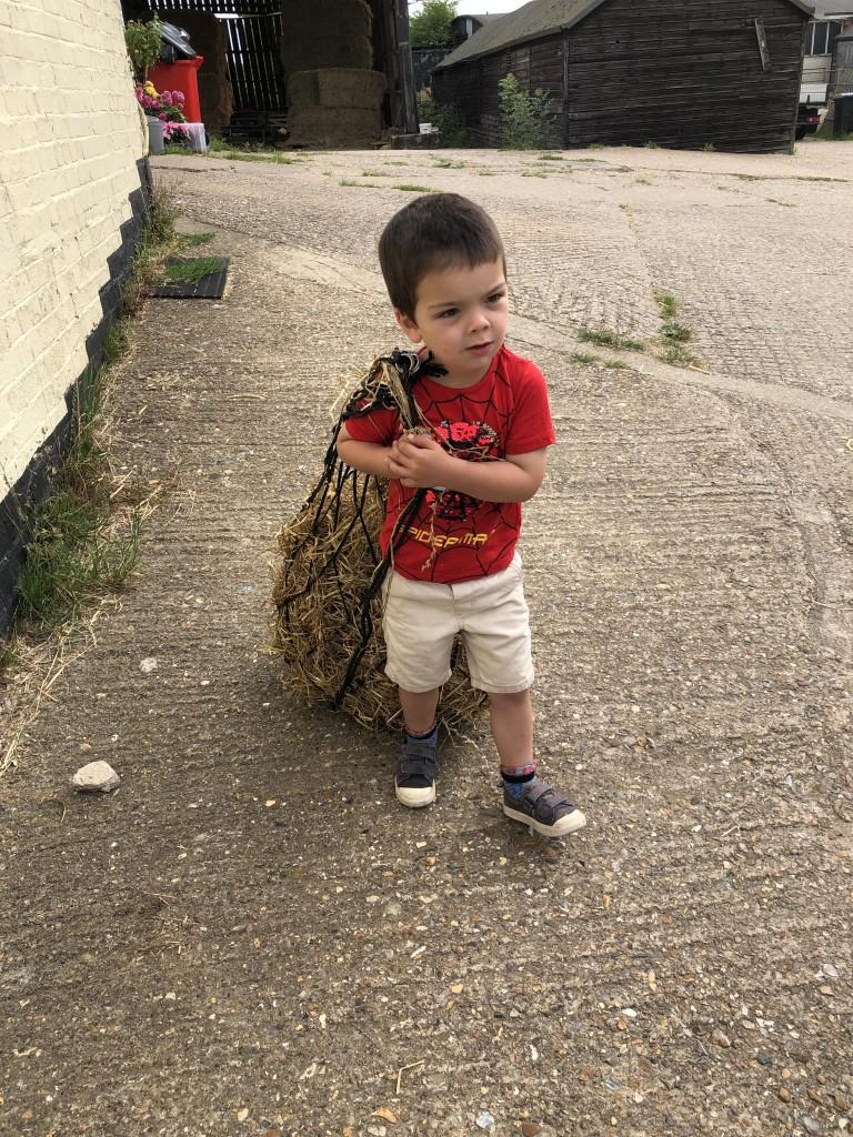 Joey carrying Haynes
