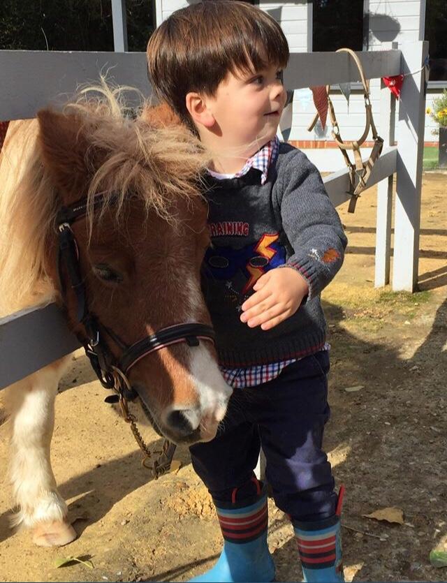 Joey and Shetland pony